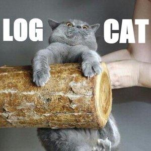 Logcat